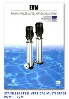 Ebara Stainless Steel Vertical Multi Stage Pump - EVM