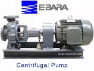 Ebara Centrifugal End Suction Volute Pump - FS