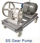Kundea Stainless Steel Gear Pump - KG